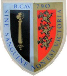 Batalhão de Cavalaria 790 Guiné Porsche Logo, Logos, Logo