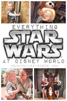 Star Wars Disney World (Star Wars: Galaxys Edge Opening August 29)