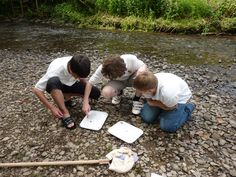 Students undertake field work using the Braunton Countryside Centre resources and environmental educational experts.