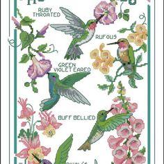 Free Hummingbird Cross Stitch Patterns   ... Cross Stitch - Dimensions 13589 The Hummingbird Society in xsd format