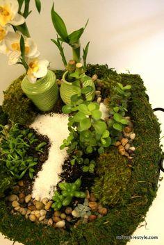How to make a Mini Garden