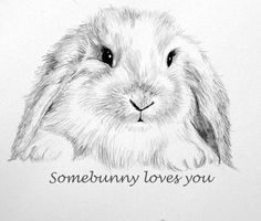 Bunny Note Card, Pencil Drawing, Some-Bunny Loves You, Stationery - Ece Sel - Pencil Drawings Of Animals, Animal Sketches, Art Sketches, Art Drawings, Easter Drawings, Draw Animals, Rabbit Drawing, Rabbit Art, Some Bunny Loves You