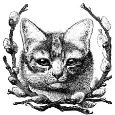 Cat and Pussy Willow - Curious Clipart - Vintage Clip Art - Black and White Tattoo Schwarz, Collages, Halloween Labels, Vintage Halloween, Vintage Christmas, Ana White, Black And White, Flower Spray, Graphics Fairy