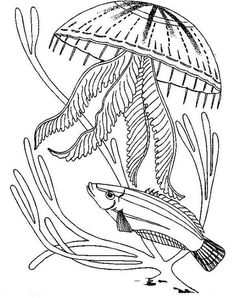 Realistic Jellyfish Coloring Pages from Animal Coloring Pages category. Printable coloring pages for kids that you could print and color. Have a look at our collection and print the coloring pages for free. Fish Coloring Page, Paisley Coloring Pages, Ocean Coloring Pages, Abstract Coloring Pages, Online Coloring Pages, Printable Adult Coloring Pages, Coloring Pages For Girls, Mandala Coloring Pages, Animal Coloring Pages
