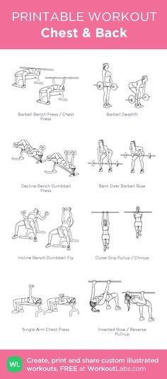 Chest & Back: my visual workout created at WorkoutLabs.com • Click through to customize and download as a FREE PDF! #customworkout