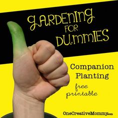 Companion Planting--Which Garden Plants Grow Well Together? Free Printable from OneCreativeMommy.com