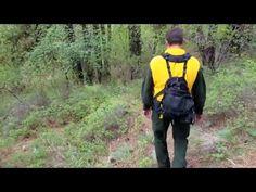 Coaxsher BetaX Wildland Fire Shirt
