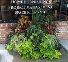 Summer planters for a business