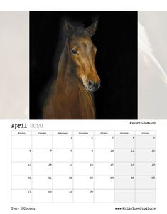 Tony O Connor 2020 Equine Art Calendar Limited Edition Art Calendar, Equine Art, Life Is Good, Sketches, Horses, Artist, Image, Beautiful, Store