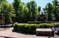 Helsingin hienoin suihkulähde sijaitsee Säätytalon puistossa [Hemmo Rättyä]