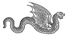 'Amphiptere (AKA Amphithere or Amphitere Phipthere) is a term used to describe a type of legless winged serpent found in European heraldry.[1]  [edit]