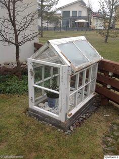 vanhat ikkunat,piha valo,puutarha