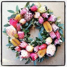 """Protea Wreath. 24"""" Wreath packed with Proteas for the holidays. Makes an impact. #cagrown #protea #wreath"""