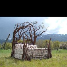 Image detail for -tree bed frame yellowbird 57 fancy it Sleeping Room Design, Deco Nature, Dreams Beds, Sleeping Under The Stars, Homestead Survival, Cool Beds, Faeries, My Dream Home, Dream Land