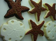 starfish and sand dollars