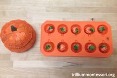Tweezing mini pumpkins into a pumpkin ice cube tray