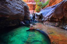 My favorite place: Zion National Park