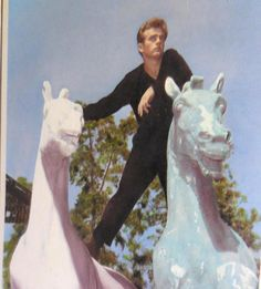 James Dean RPPC Iconic Actor James Dean With Two White Horses