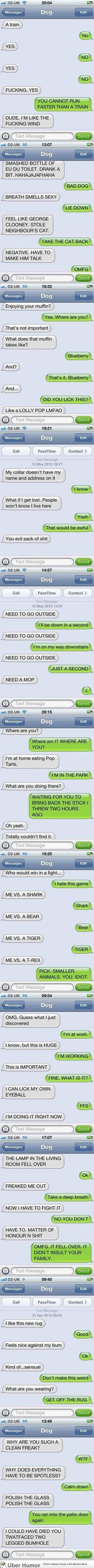 Some classic 'Texts from a Dog'
