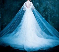 Michael Cinco Collection 2014-2015... I love this wedding dress. where can I get one.