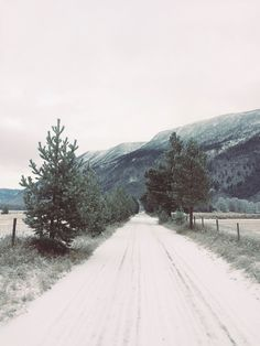 Strolling in the cold « Camilla Pihl