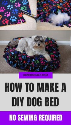 This DIY dog bed is a fantastic project for any crafty dog pawrent. Learn how to make an easy no sew dog bed with my step by step instructions. You only need a couple of materials and it only takes around an hour to make. The result - your own beautifully Dog Steps For Bed, Diy Dog Toys, Homemade Dog Toys, Diy Dog Bed, Golden Retriever, Dog Crafts, Dog Carrier, Pet Beds, Doggie Beds