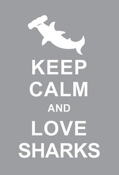 It's #SpringBreak! Remember to keep calm and love sharks! #savesharks @OCEARCH @ChrisOCEARCH