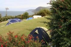 Little Meadow - Best Campsites in Croyde & North Devon, Devon, England | Cool Places UK