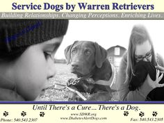 Nonprofit organization that provides service dogs to people with invisible disabilities.