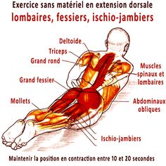 Yoga Fitness Flat Belly exercice pour le sans materiel en extension dorsale - There are many alternatives to get a flat stomach and among them are various yoga poses. Workout Plan For Women, Yoga Tips, Yoga Routine, Best Yoga, Workout For Beginners, Asana, Health Problems, Yoga Fitness, Mens Fitness