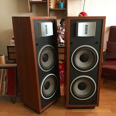 Ess speaker stereovintage
