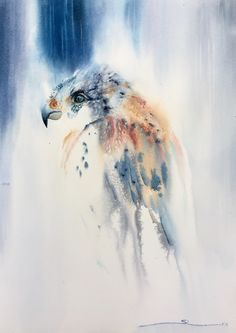 """42cm x 59cm = 16.5"""" x 23""""  """"Though she be but little she is fierce"""" (Shakespeare). Small and fierce like a small boy backed up against the fence by the brigand bullies, the Kestrel is fast and agile...and often sees ways out of situations others don't."""