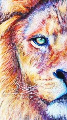 gorygul - 0 results for animals Lion Images, Lion Pictures, Lion And Lioness, Lion Of Judah, Animal Paintings, Animal Drawings, Illustration Art Dessin, Lion Drawing, Lion Love