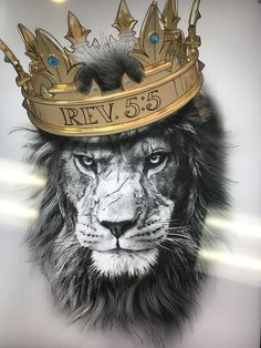 - - You are in the right place about animal wallpaper android Here we offer you the most beautiful p Lion Live Wallpaper, Animal Wallpaper, Lion Images, Lion Pictures, Tigeraugen Tattoo, Tier Wallpaper, Lion Head Tattoos, Lion Tattoo King, Baby Animals