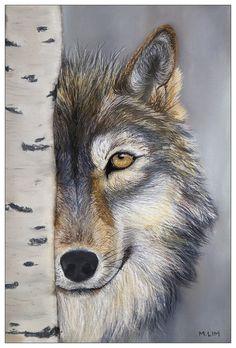 Winter Wolf by marianne-lim on DeviantArt Wildlife Paintings, Wildlife Art, Animal Paintings, Beautiful Creatures, Animals Beautiful, Cute Animals, Wolf Spirit, Spirit Animal, Animal Sketches