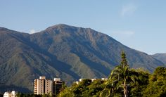 Caracas Shots: The Sultan in Love