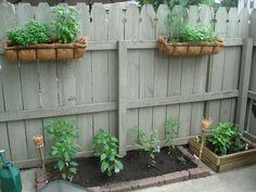 Cute little apartment garden