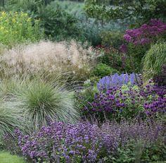 weeltje-tuin-planten