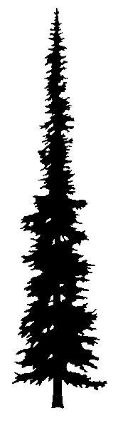 kostenloses bild auf pixabay silhouette schwarz. Black Bedroom Furniture Sets. Home Design Ideas