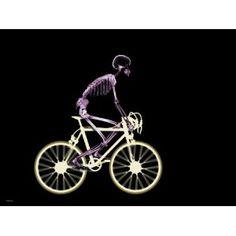 Skeleton Riding Bike Poster (Mass Market Paperback)  http://www.amazon.com/dp/0983497664/?tag=gatewaylapt0f-20  0983497664