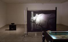 Ian Carr-Harris, After Dürer, 1989. Cabinet, reproduction of Dürer print, film loop, rear projection screen, 16 mm sound projector, speaker.