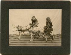 Galletti's Dogs and Monkeys Vaudeville Act, c. 1900