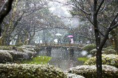 Kenrokuen gardens, Japan. Photo by Claire Takacs. www.takacsphoto.com