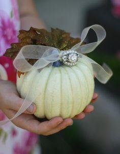 pumpkin ring bearer pillow.