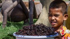 A town in Cambodia has come up with a unique way to deal with its huge tarantula…