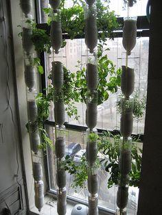 Window Farms: Huertos hidropónicos en la ventana de tu casa