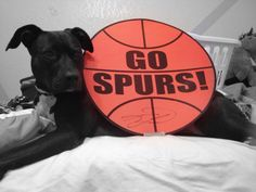 My dog, Puma, is cheering on Spurs  Go  Spurs