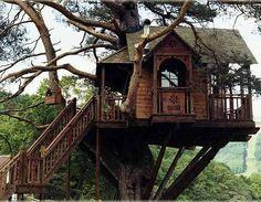 TREE HOUSE – amazing treehouse! The Treehouse Lodge, Loch Goil, Scotland photo via john