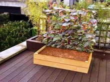 A treated timber raised bed designed for climbing plants liek peas, beans, nastutiums or sweet pea. Raised Flower Beds, Raised Beds, Plant Supports, How To Level Ground, Garden Planters, Bed Design, Trellis, Vegetable Garden