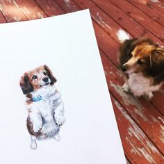 My OG dog model Ruby | #petportraits #dogart #sketchbook Dog Modeling, Dog Portraits, Dog Art, Have Time, Doodles, Dogs, Painting, Animals, Instagram